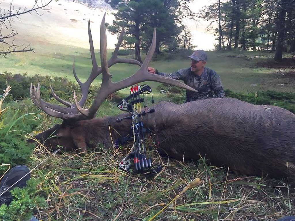 Hammer 'Em Outfitters Montana Hunting Elk and Deer 4