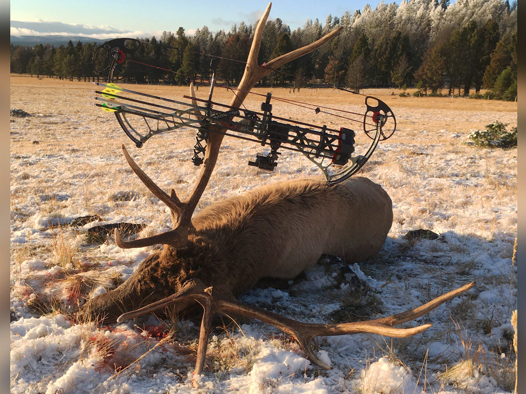 Hammer 'Em Outfitters Montana Hunting - 2018 Elk 27