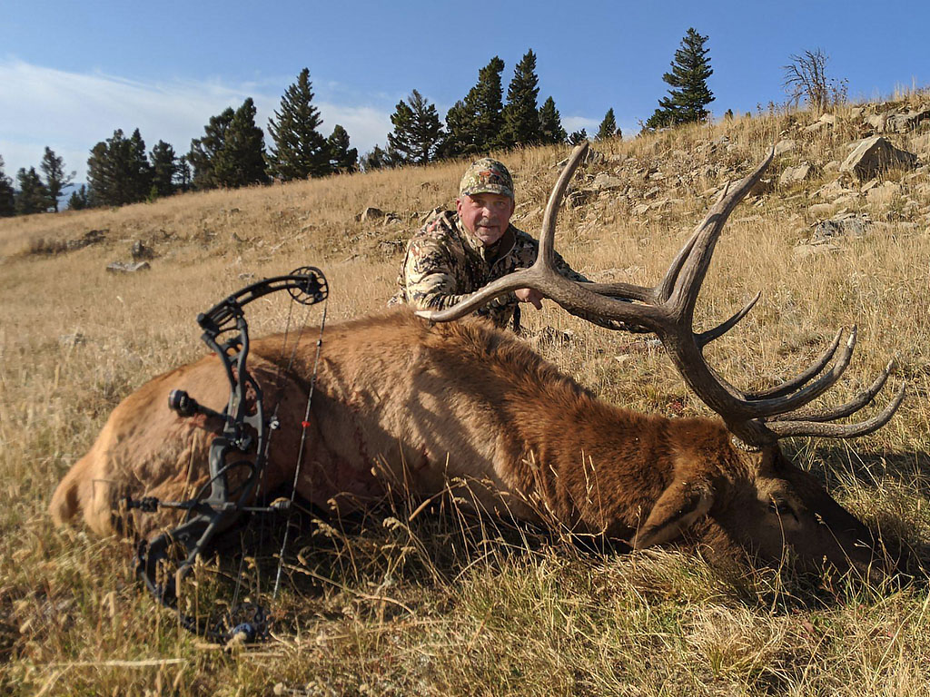 Hammer 'Em Outfitters Montana Hunting - 2020 Elk 19